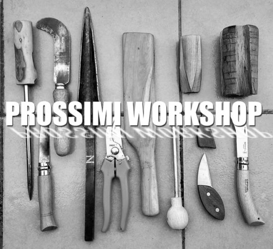 Prossimi workshop 2019