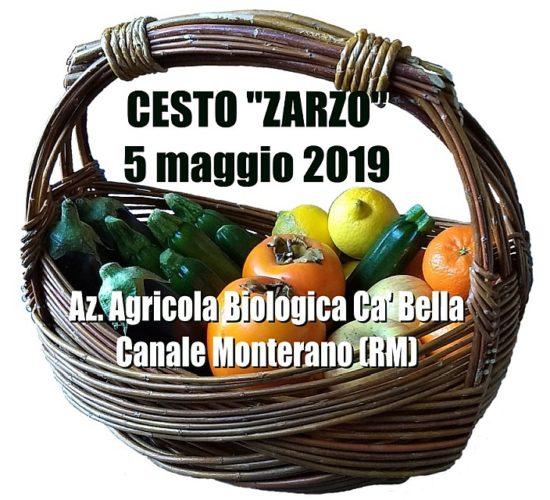 Cesto Zarzo – LAZIO