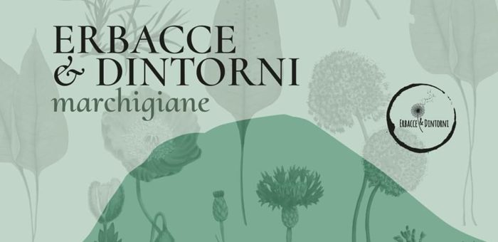 Erbacce & dintorni Marchigiane